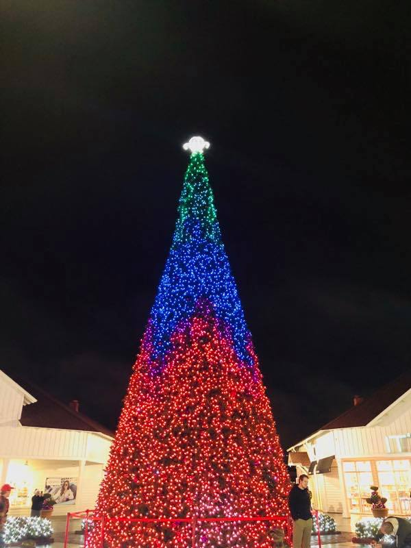 O Christmas Tree… O Christmas Tree... How Lovely are thy branches at Broadway at the Beach!